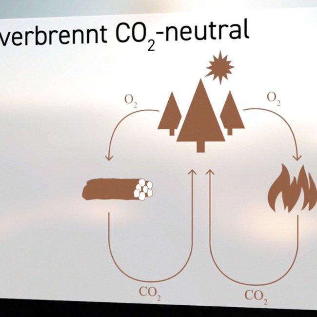 Die Wärmegewinnung in Heizkaminen, Kachelöfen und Kaminöfen verläuft CO2-neutral.